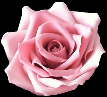Exquisite wedding cakes york pa wedding cake bakery york pa near large light pink pink sugar rose mightylinksfo